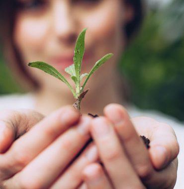 Erstes Förderprogramm der neuen Stiftung zur Förderung ehrenamtlichen Engagements!